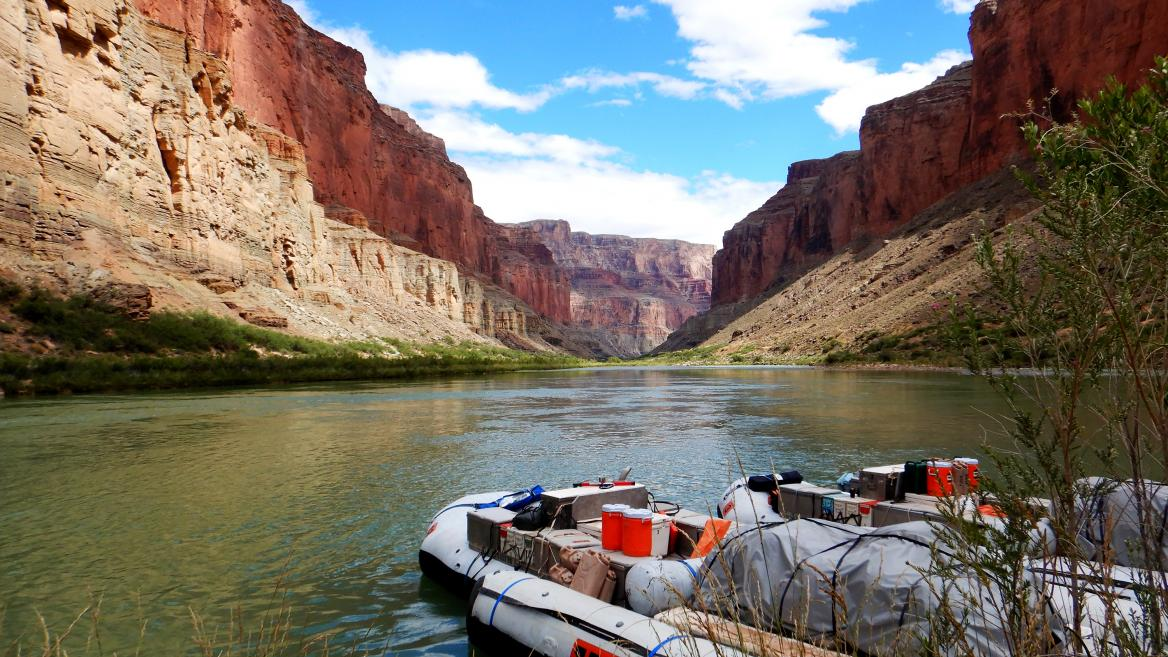 The Grand Canyon draws millions of visitors each year, but a trip with The College's Institute of Human Origins this summer gave visitors a chance to see the site alongside ASU experts.