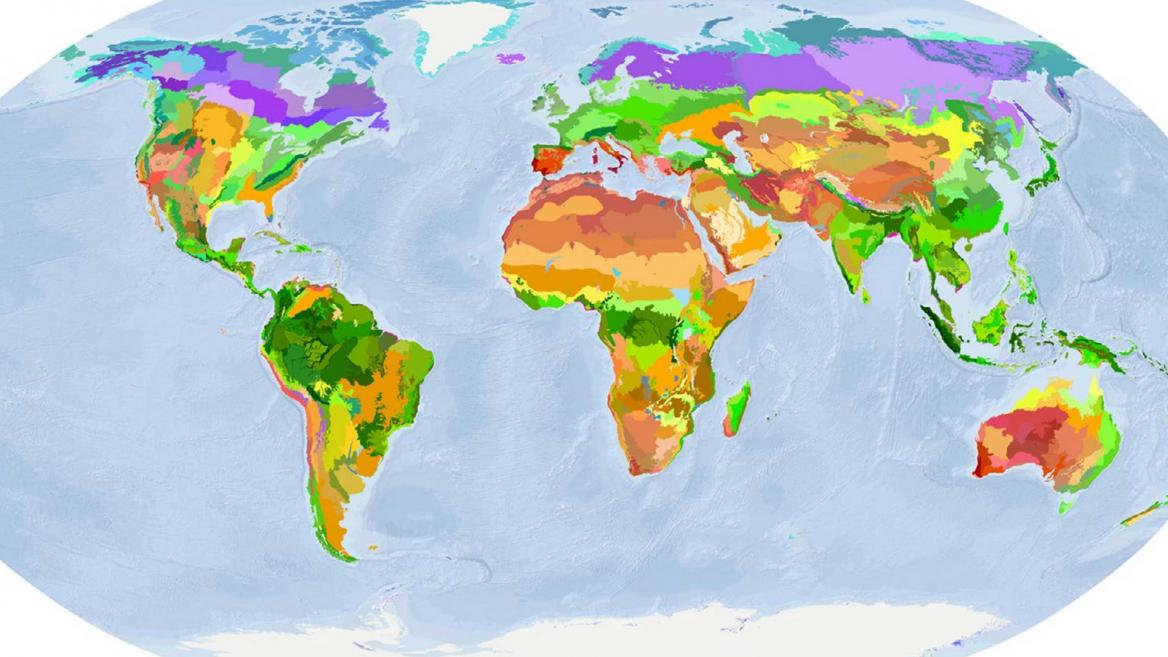 World ecoregions