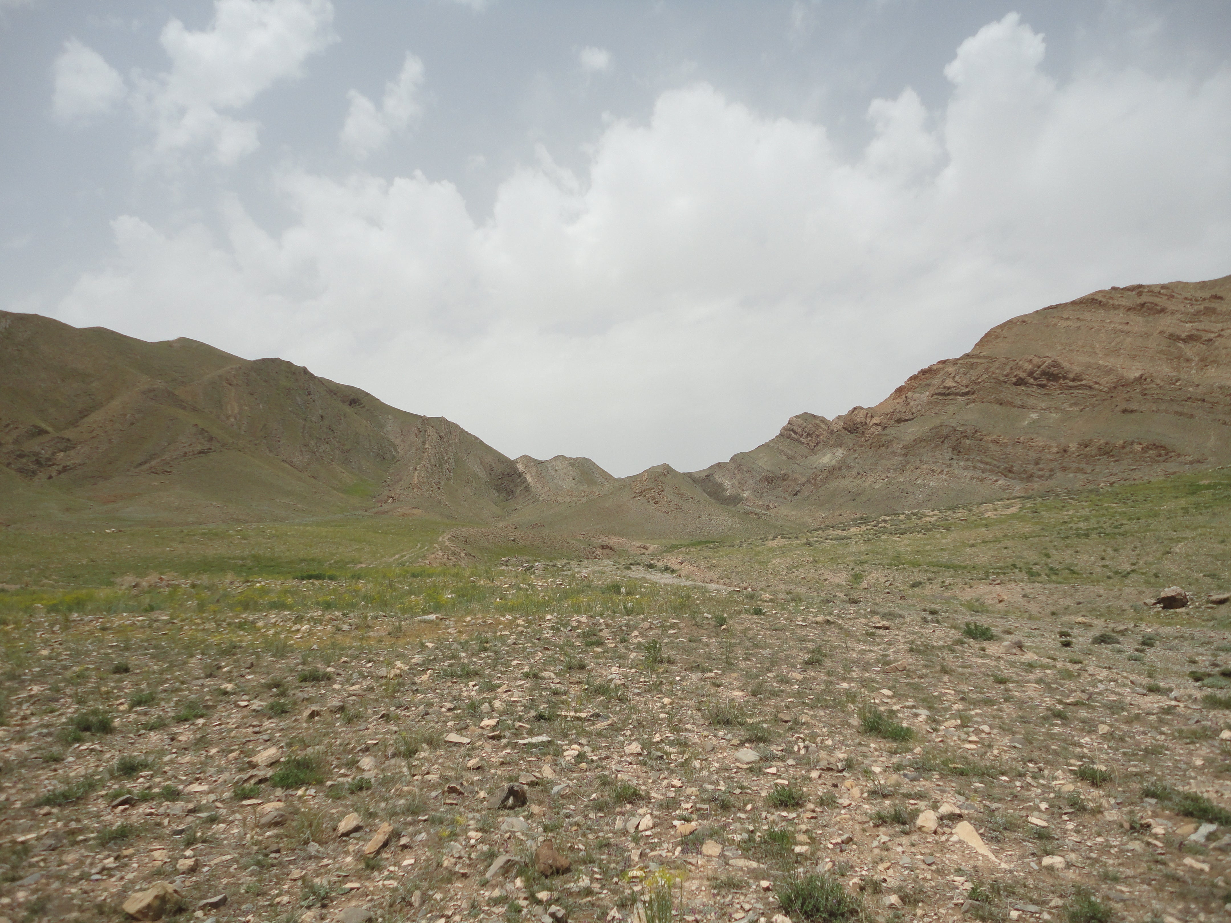 Field view from Iran where samples were collected for this study