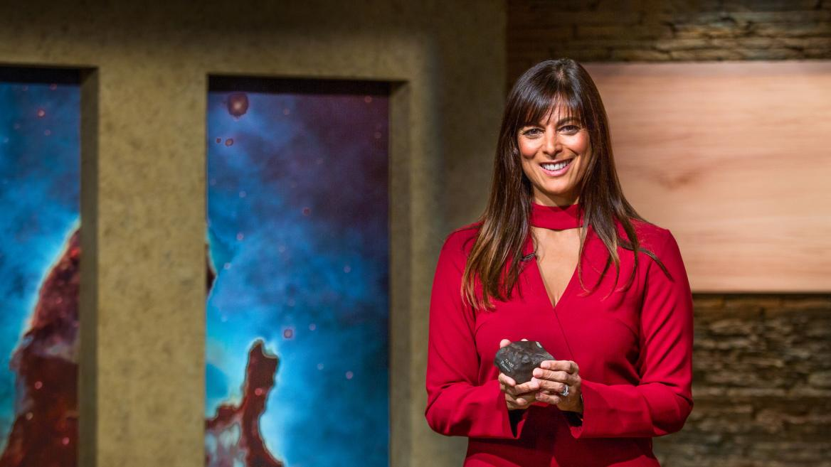 Meenakshi Wadhwa is the director of the School of Earth and Space Exploration at ASU